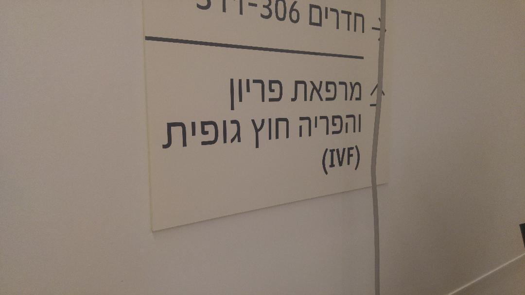מחלקת הפריות  IVF -אסותא אשדוד